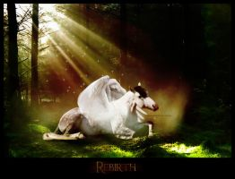 Rebirth by xxYume