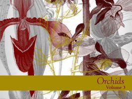 Orchids Volume 3 by remittancegirl