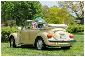 Nice VW Beetle Convertible by TheMan268