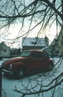 Waldenburg's VWs by Pippa-pppx