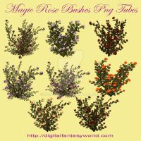 Magic Roses Png Tubes by kayshalady