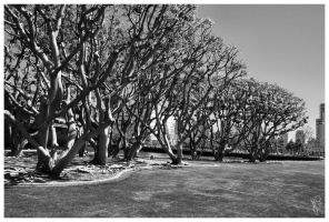 Seaport Village 7 by JWhile