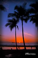 Waikiki Sunset by Milton-Andrews