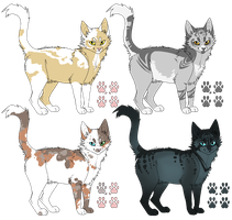 Cat adopts (sold) by Aspenture