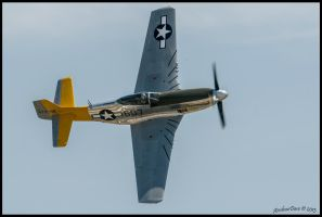 472861 P-51 Mustang Planes of fame 2013 by AirshowDave