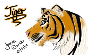 Tiger by JoannaFaire