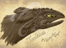 Toothless by nalary