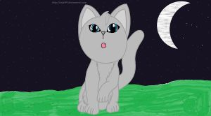 Dovewing-Starry Night by mlp44