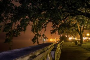 Foggy Path by 904PhotoPhactory