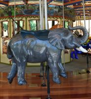 Hogle Zoo 6 - Carousel by Falln-Stock