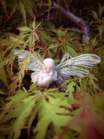 Cocoon Faery in the garden by S0WIL0