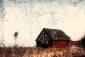 Lost with the Grain by pubculture