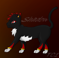Shadow the cat by slycooper998