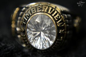 2014 Class Ring (David West) [TIMBERVIEW] by ShineeDragon
