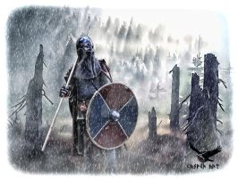 Viking from Iceland by thecasperart