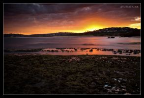 Golden Glow by andyjimmy