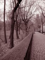 Walking West Central Park by Blue-to-the-Bone