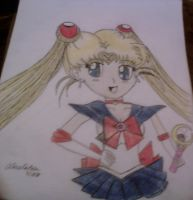 sailor moon birthday gift by aliciamarie923
