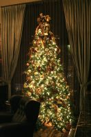 Christmas Tree Oh Christm.... by love-buzz