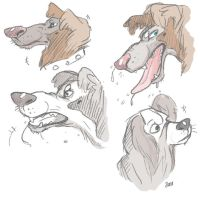 some dogs by Allmypower