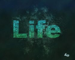 Life look through typografy by lndeed