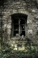 Black window by kromo