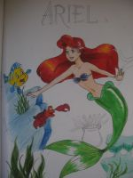 The little mermaid and friends by melon-ramune