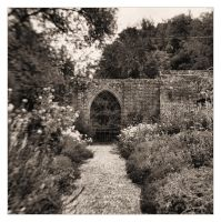 The Walled Garden by Bogbrush