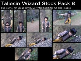 Taliesin Wizard Stock Pack 8 by Durkee341
