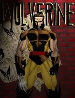 Wolverine by HunterSnake11