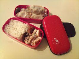 Bento: 4 - Darling Dumplings by XoBrittuhoX