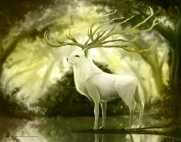 white deer by psdeluxe