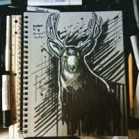 Inktober: Deer by Rhunyc