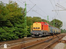 408 203 near Gyor with a passenger train by morpheus880223