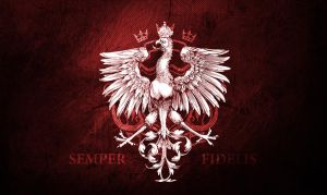 Semper Fidelis eagle wallpaper by N4020