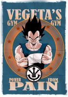Vegeta's Gym by Merrk