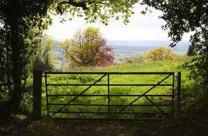 Blackdown Hill 2 - Stock by GothicBohemianStock