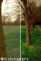 Difference to nature by xe2x
