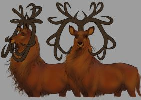 Donnaghan Antler Ref by sealle