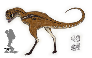 The Living Dinosaurs: Common Hottentot by Pterosaur-Freak