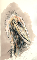 Portrait of an Avian Beast by Aetharius