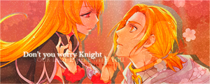 Knight and Lady by MunDan