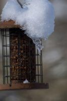 icicle bird feeder by Imogenina