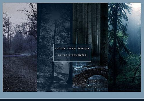 STOCK PACK - Dark forest. by plaisirenenfer