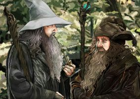 Gandalf and Radagast by momofukuu