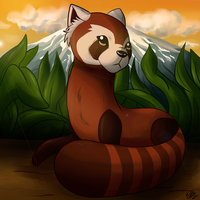 Pabu by GralMaka