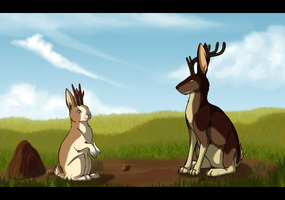 Jackalopes by Esempy