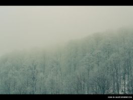 cold foggy... by Iulian-dA-gallery