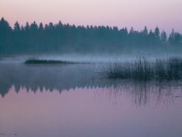 silence by kliss