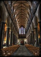 Salisbury Cathedral 1 by Dloksh